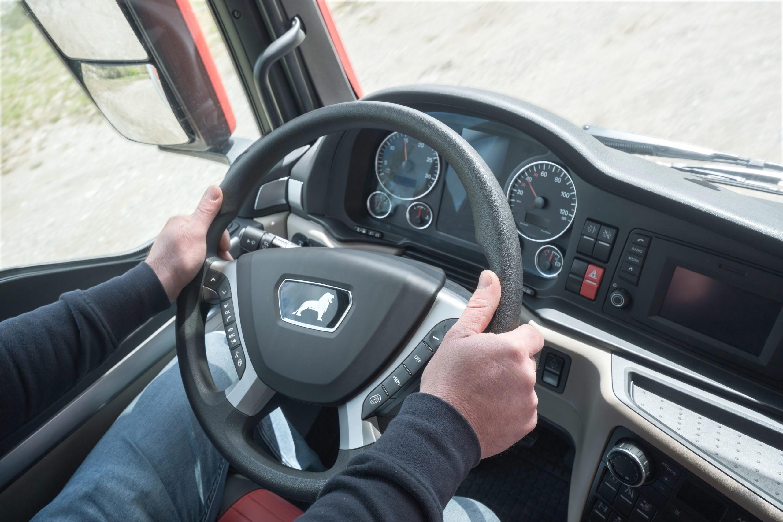 Dettaglio mani e volante di autista Good Truck